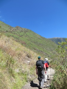 Comparison between a fire-burnt area and not on the Short Inca Trail