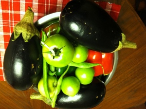 Vegetables from our fall harvest - eggplant, green tomatoes, and peppers