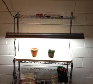 DIY Grow light setup for starting seeds