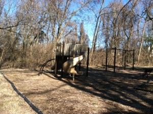 Playground on Millenium Trail